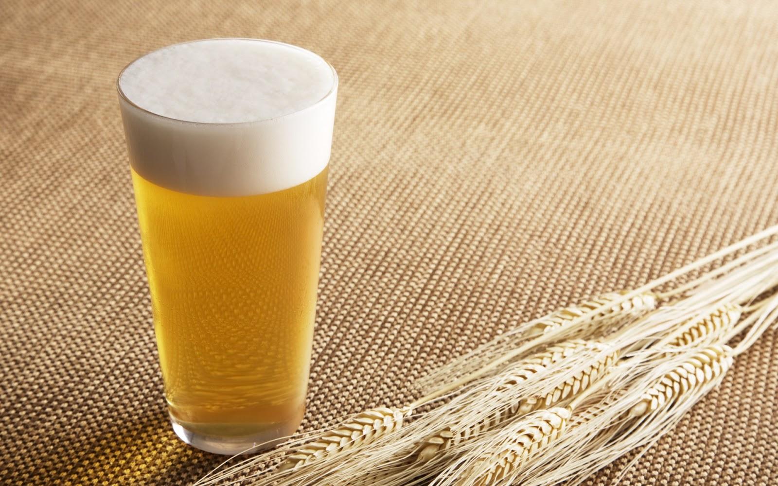 ゆる〜い酒類業界研究① ビール編